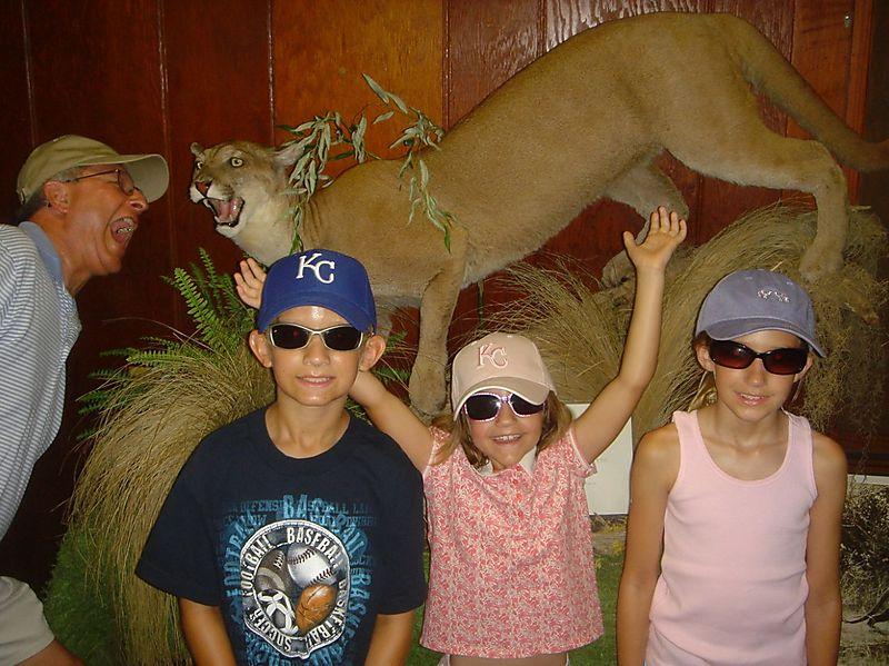 Vaca 08 Naples, FL - Wildlife Kids
