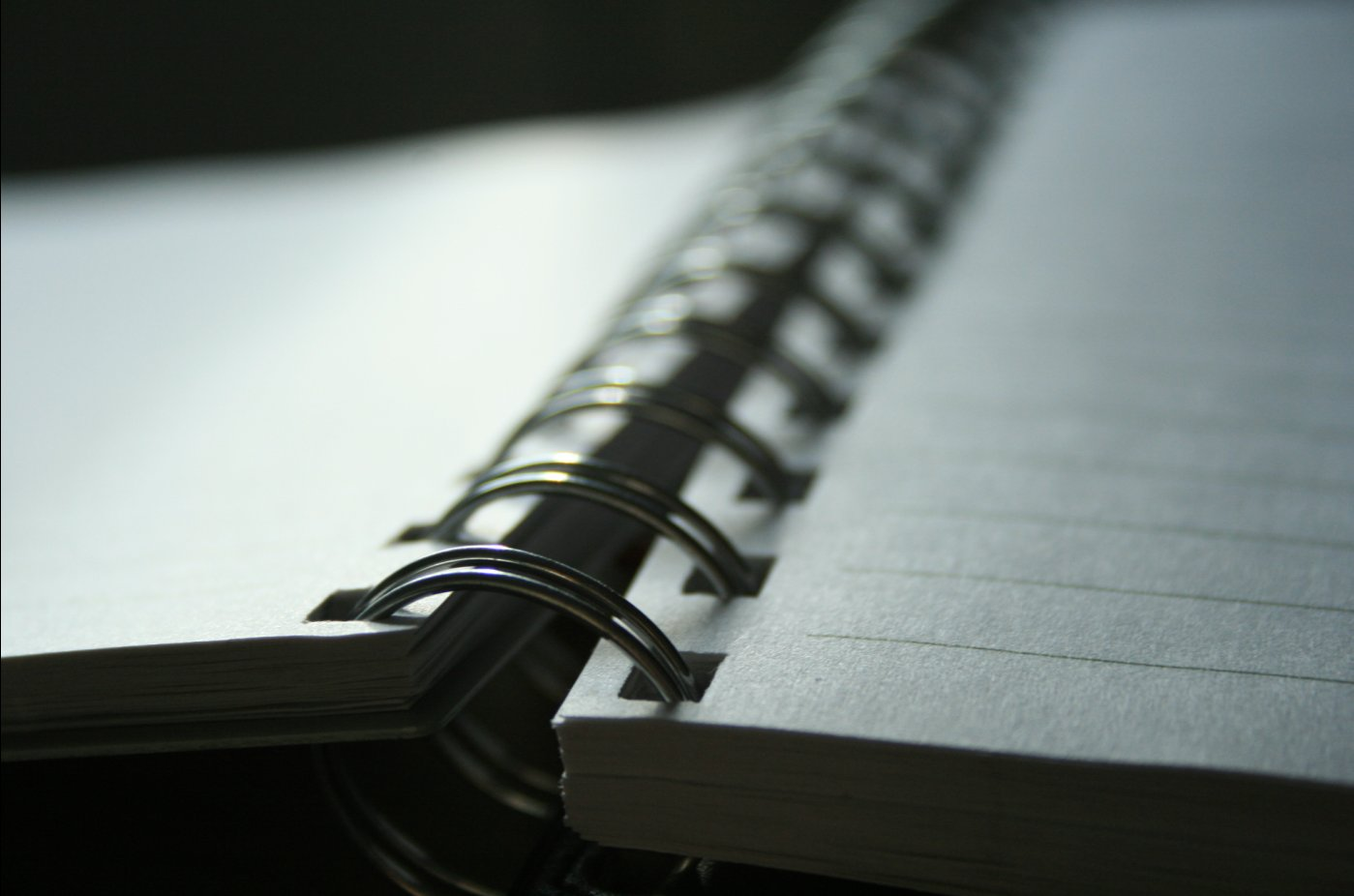 Bible - Journal