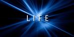 Series_07_life